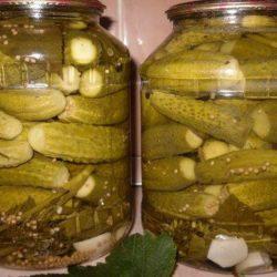 Огірки з гірчицею на зиму пять простих покрокових рецептів