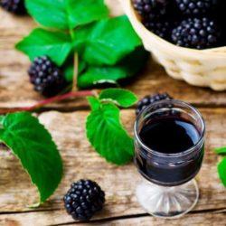 Домашнє вино з ожини пять простих покрокових рецептів