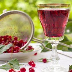 Домашнє вино з червоної смородини вісім простих покрокових рецептів