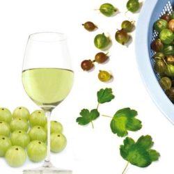 Домашнє вино з агрусу пять простих покрокових рецептів