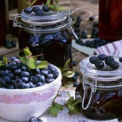 Чорниці у власному соку на зиму пять простих покрокових рецептів
